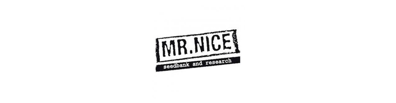 Semillas Regulares de Mr. Nice - Sinsemilla Street Growshop